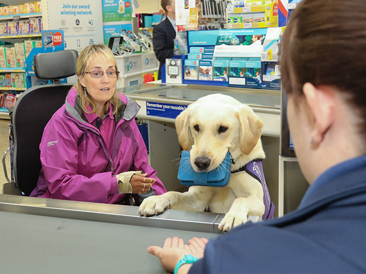 Assistance dog handing purse to cashier for woman in a wheelchair