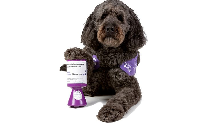 Canine Partners demonstration dog Doyle with fundraising tin