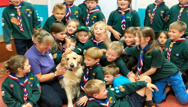Billingshurst cubs fusses meet and great dog Jenson