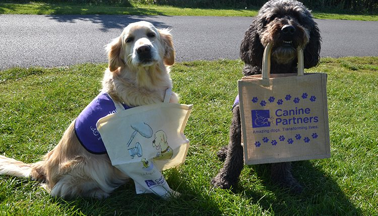 Canine Partners dogs holding charity tote shopping bags