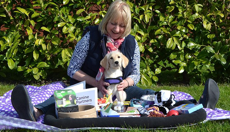 Woman with puppy posing with a corporate donation puppy pack for Canine Partners