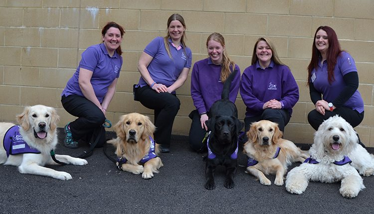 Canine Partners Midlands team based in Leicestershire posing with assistance demonstration dogs