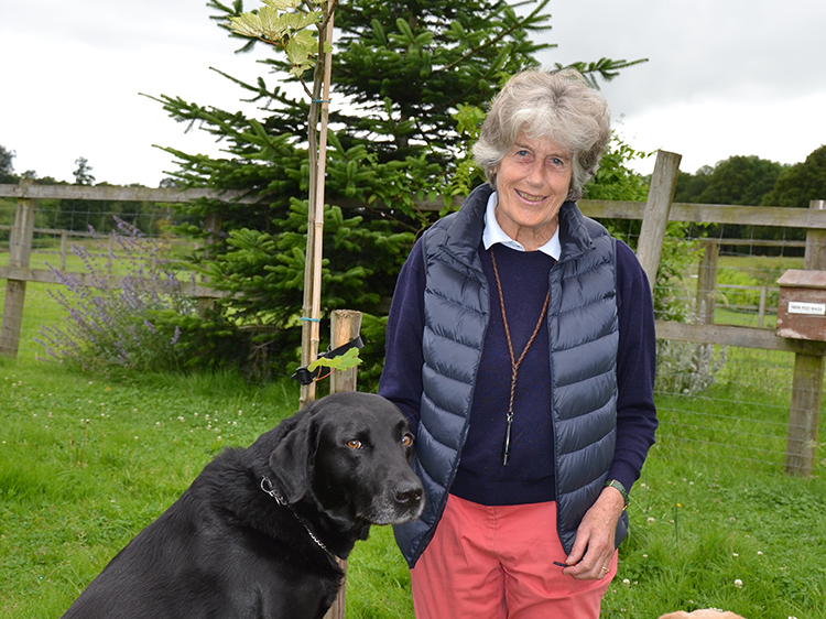 Lady Kindersley and her black labrador
