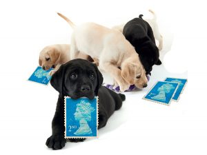 site_imagery_stamp_appeal_puppies