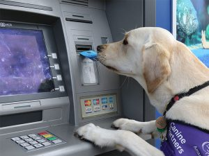 site_imagery_workingshot_May_cashpoint