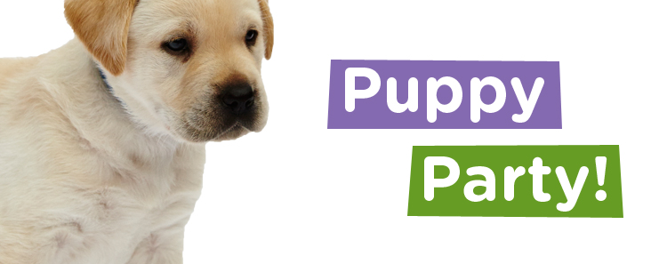 Canine Partners Puppy Parties Puppy Walker Recruitment
