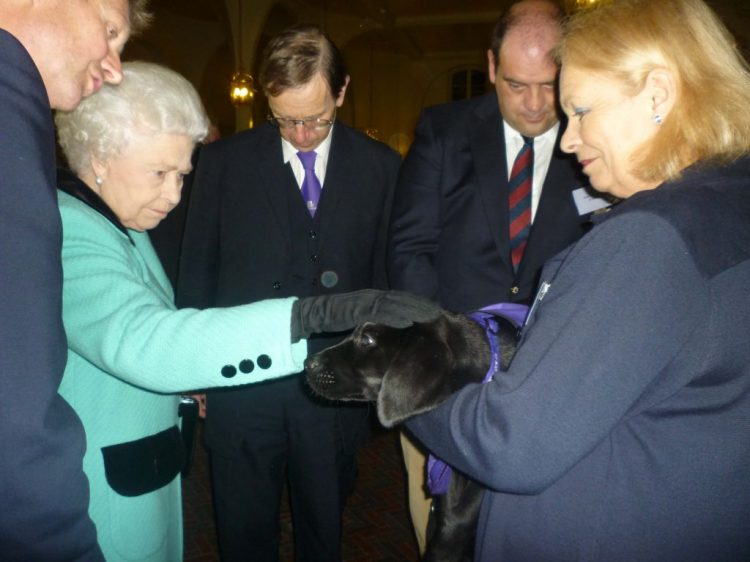HM The Queen meeting Canine Partner puppy Galloway