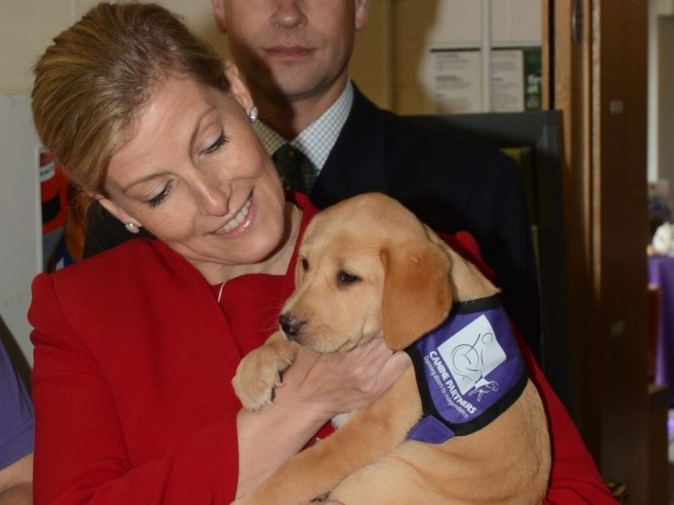 HRH The Countess of Wessex with Canine Partners puppy Kelda