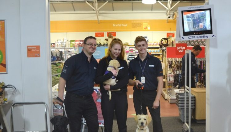 Pets Corner staff at Brighton Racecourse posing with assistance dog puppies in training