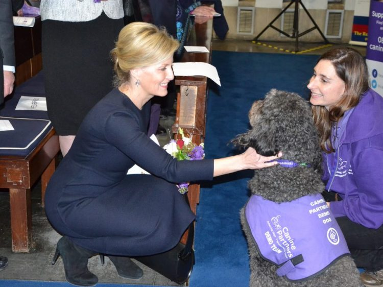HRH The Countess of Wessex GCVO at our Draycott Carol Service 2015 with demo dog Doyle