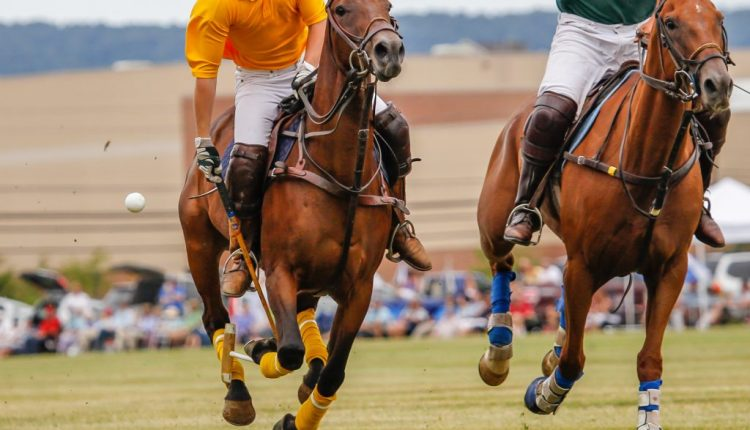 Two men riding horses at a Polo event