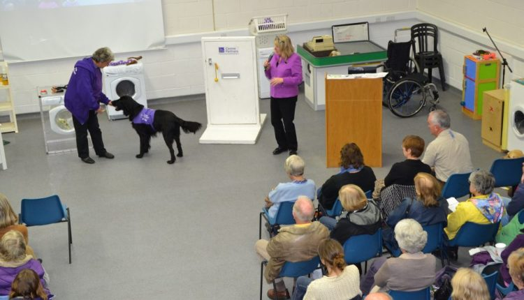 Assistance dog demonstrating task work at a Canine Partners Information Session