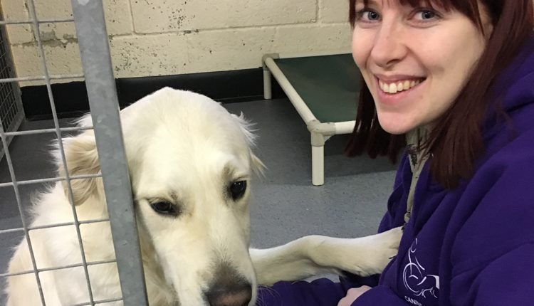 Kara Carver Dog Welfare Officer at Canine Partners