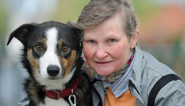 Bernadette and Ben are fundraising for Canine Partners
