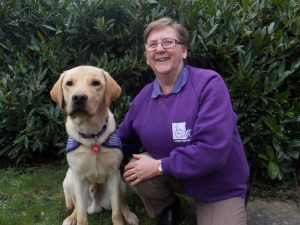 Puppy walker for Canine Partners Carol Lloyd and Milo