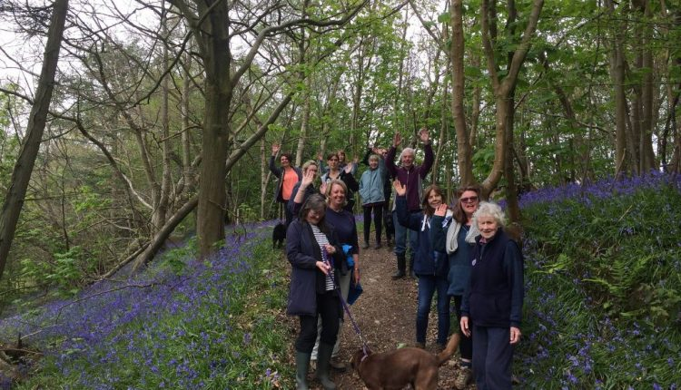 Group embarking on the Canine Partners Riverhill Bluebell Walk