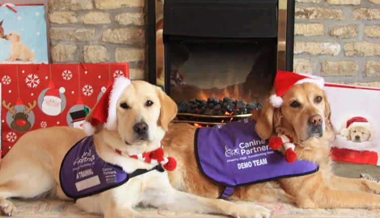 Canine Partners East of England Carol Service 2017