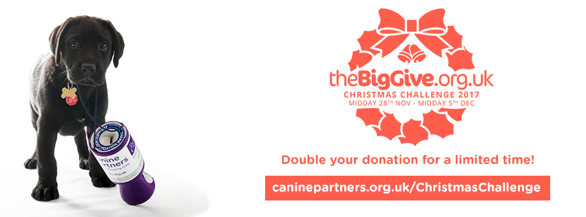 Christmas Challenge.The Big Give Christmas Challenge 2017 Canine Partners