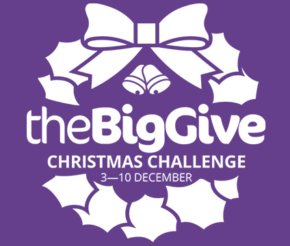 The Big Give Christmas Challenge 3-10 Dec 2019 logo