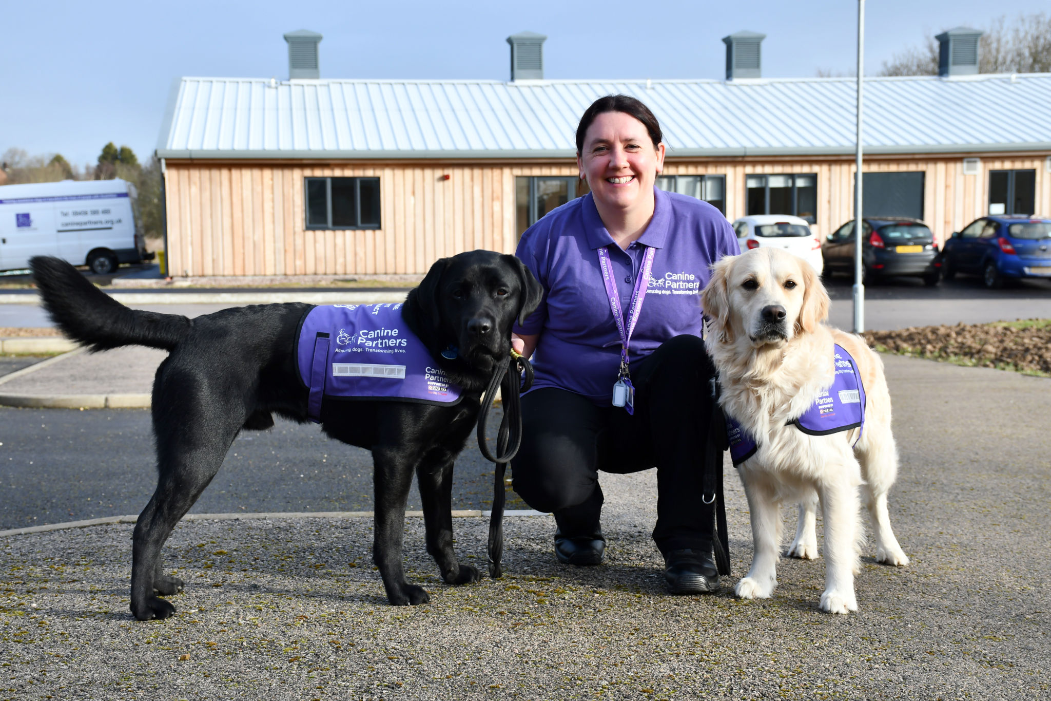 Canine Partners trainer with a golden retriever and black labrador