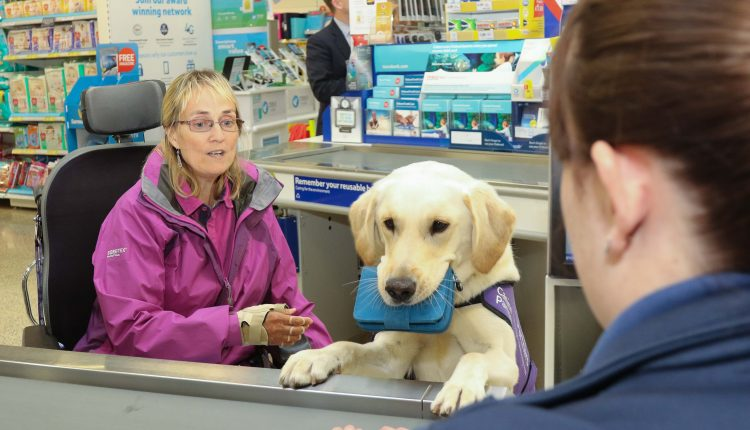 Canine Partner May with Kate at a check out