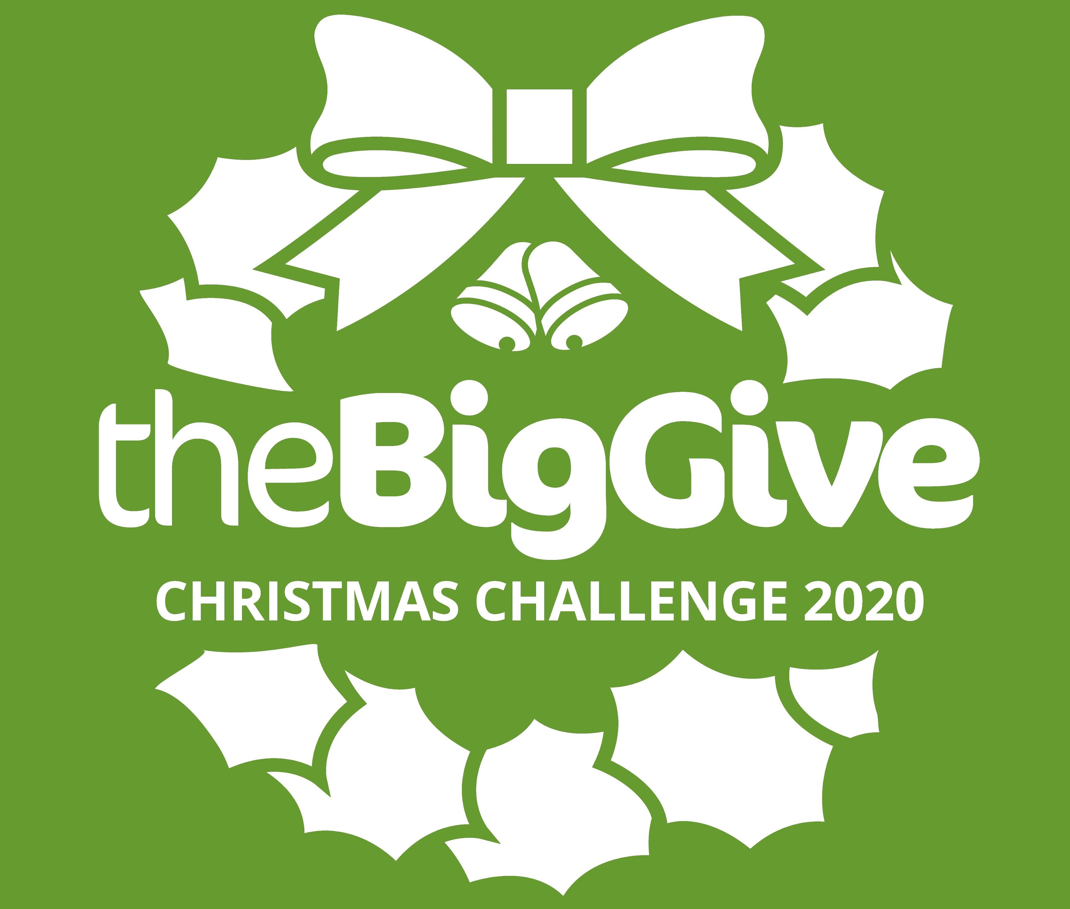 The Big Give Christmas Challenge 2020 logo