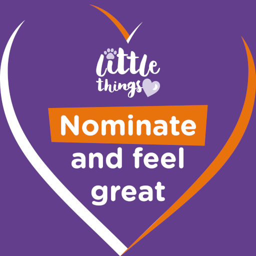 Little Things: Nominate and feel great