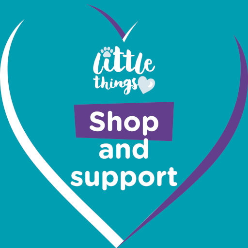 Little Things: Shop and support