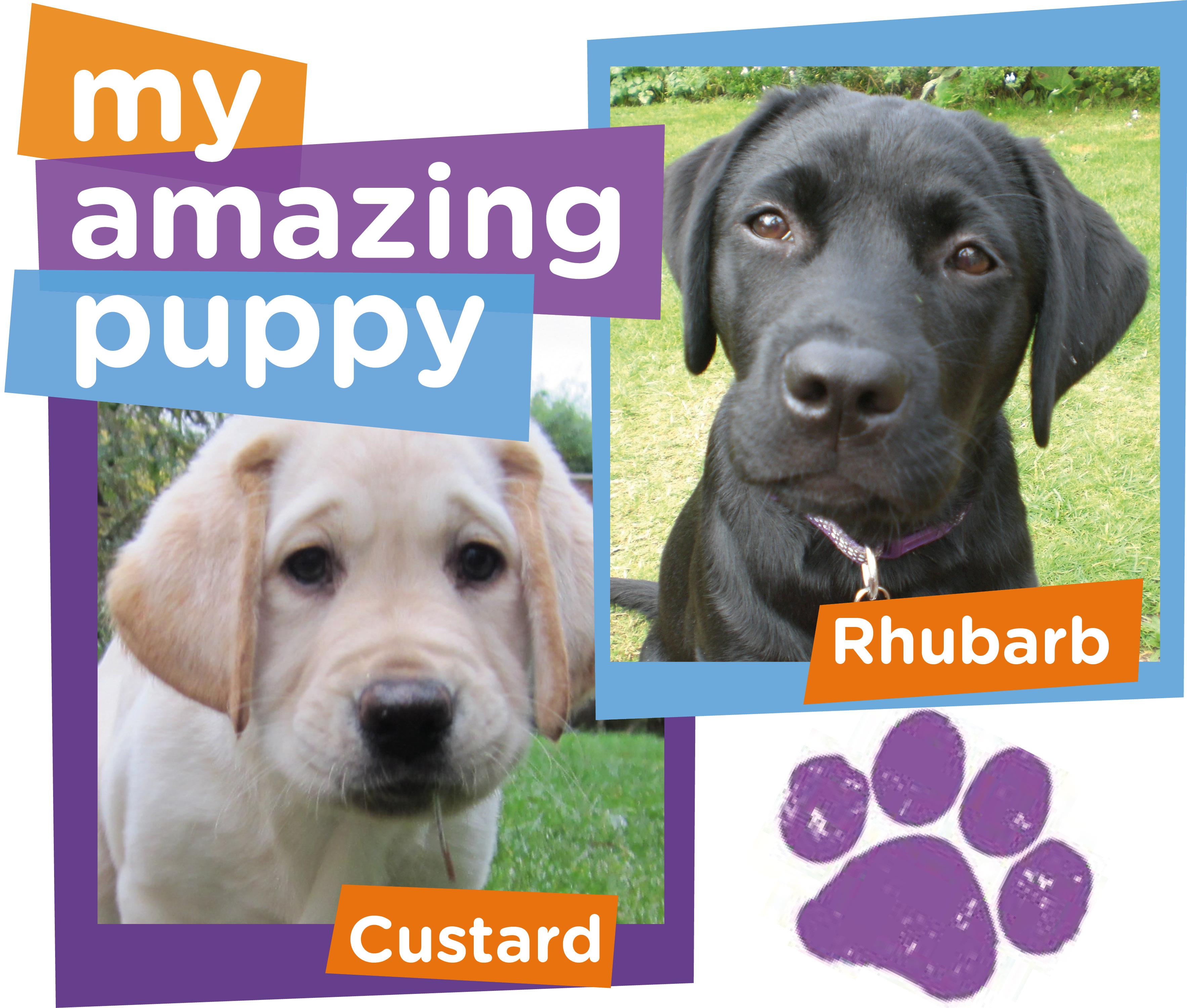 Rhubarb or Custard, your My Amazing Puppy choice