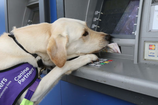 CP May taking money from a cash machine