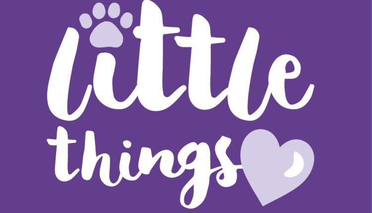 Little Things logo