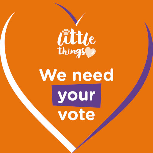 Little Things: We need your vote