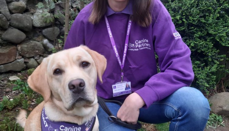 Volunteer Puppy Fosterer and her dog